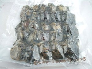 oyster04 Wholesale 100PCS vacuum-packed  pearl oysters with Round pearls