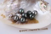 Btahiti1415AAA 14-15mm AAA Grade Circle Baroque Tahitian pearls, Drop shape