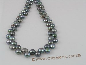 seed pearl jewelry side-dirlled 6-7mm peacock color bread loosen pearl strands--bread04 Cnepearls Ltd