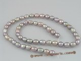 rs03 five strands 6-7mm purple rice-shape pearls wholesale