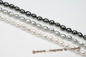 shps007 10*13mm Oval Shape South Sea Shell Pearl Strands