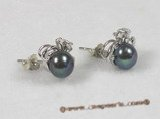 spe070 sterling black breads pearl studs earrings with sterling tray