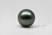 Tahiti13-14a 13-14mm large natural black tahitian loose pearls in A grade